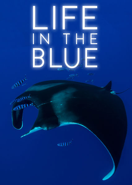 Life in the Blue on Netflix Canada