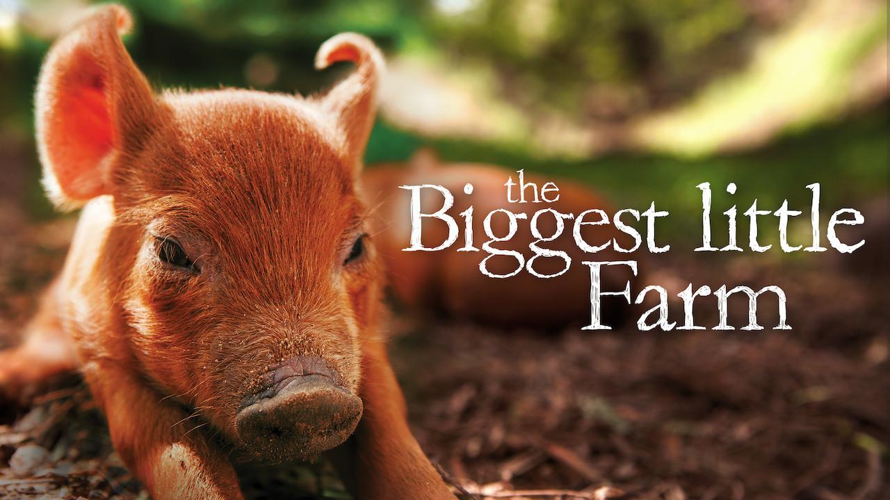The Biggest Little Farm on Netflix Canada