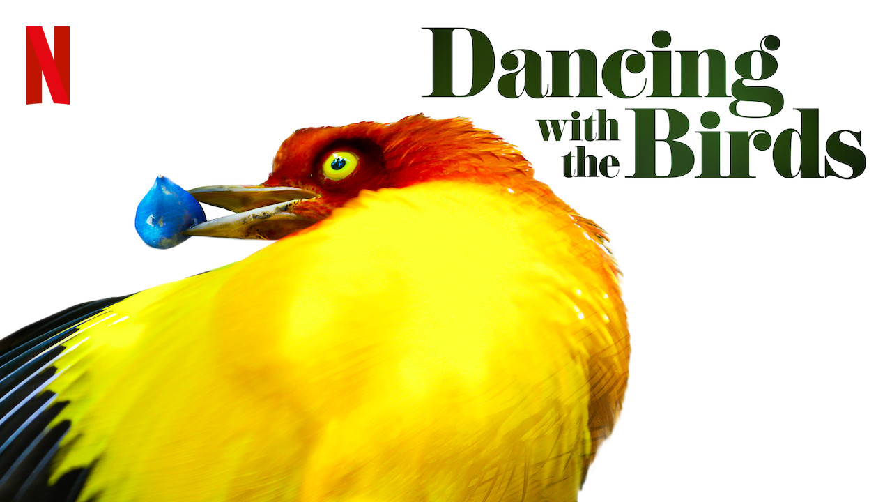 Dancing with the Birds on Netflix Canada